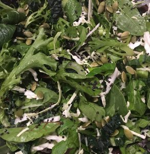 Nutritious Green Salad
